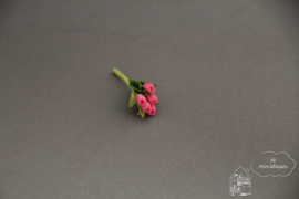 Bosje tulpen roze