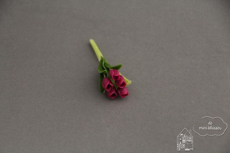 Bosje tulpen paars