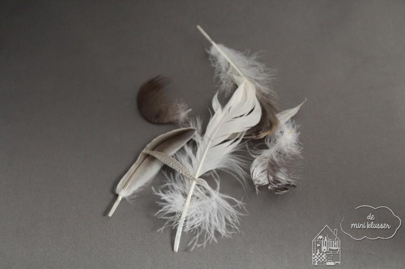 Gemengde bruin/witte veren