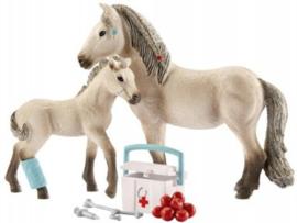 Schleich Rescue Set Horse Club ( 42430)