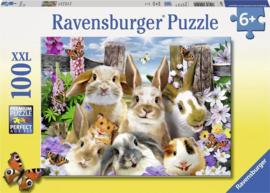 Ravensburger Puzzel Knaagdieren Selfie