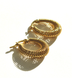 Spiral Golden Hoop Earrings
