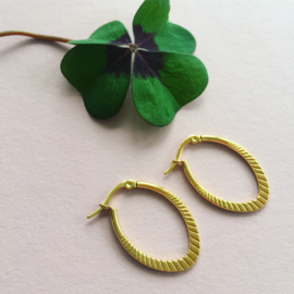 Golden Ovale Earring hoops