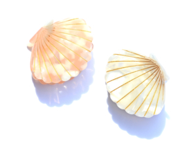 Mermaid Shell Hairclip
