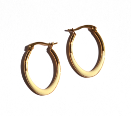 Golden Ovale & Enamel Earring hoops