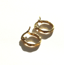 Faceted Golden Hoop Earrings