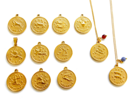 Zodiac Big Coin Necklace