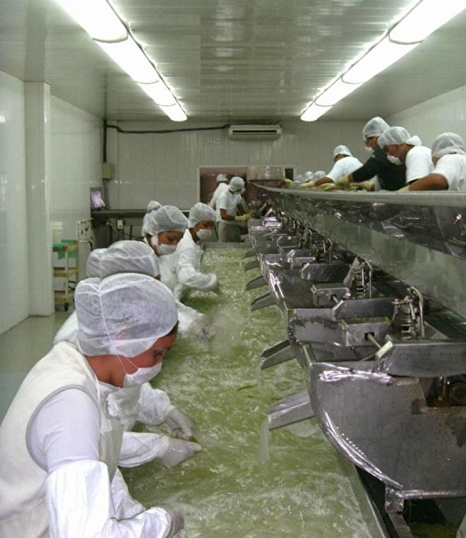 aloe vera gel - wassen met de hand