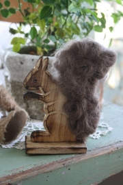 "leuke wollige eekhoorn ""bruingrijs"""