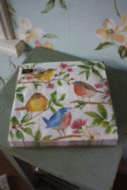 """papieren servetten """" Birds"""""""