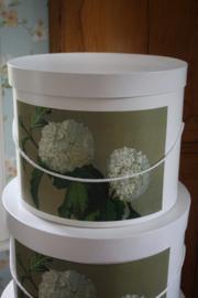 prachtige hoedendoos met witte hortensia/ Annabelle M