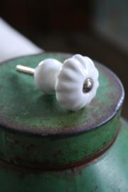 mooie klein wit porseleinen kastknop in champignon vorm