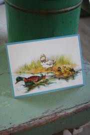 """ansichtkaart met glitter """" familie eend op het water"""""""
