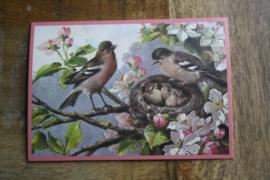 """ansichtkaart met glitter """" voorjaars vogeltjes """""""