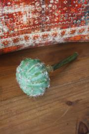 kunststof cactus op steel