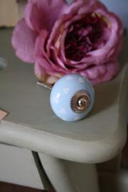 mooie lichtblauwe kastknop met hartjes