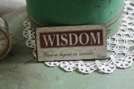 "leuke magneet met tekst "" Wisdom"""