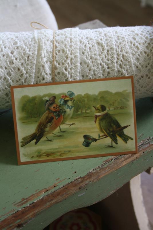 """schattig kaartje """"vogelpraat"""""""