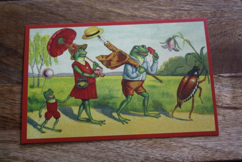 """schattig kaartje """" De kikkerband"""""""