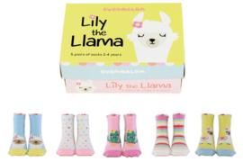 Cadeaudoosje met 5 paar kindersokjes - 2/4 jaar - Lily the Llama