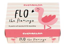 Cadeaudoosje met 5 paar babysokjes - FLO the flamingo