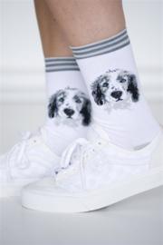 Bonnie Doon Spaniel sokken mt 36 - 42