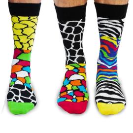 Oddsocks - Cadeaudoos met 6 verschillende You Animal sokken - maat 39-46