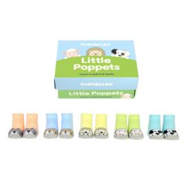 Cadeaudoosje met 5 paar babysokjes - Little Poppets