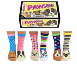 Oddsocks - Cadeaudoos met 6 verschillende hondjes sokken - Pawsome - maat 37-42