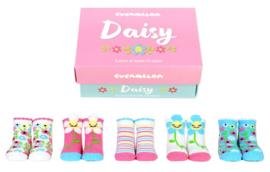 Cadeaudoosje met 5 paar kindersokjes - 1/2 jaar - Daisy
