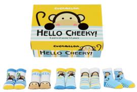 Cadeaudoosje met 5 paar kindersokjes - 1 tot 2 jaar - Hello Cheeky