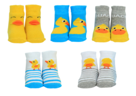 Cadeaudoosje met 5 paar babysokjes - Hello Ducky - 0 tot 6 mnd