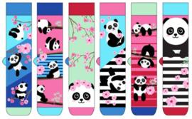 Oddsocks - Mismatched sokken - Cadeaudoos met 6 Panda sokken  Bamboozle  - maat  37 tot 42