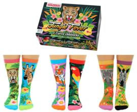 Oddsocks - Cadeaudoos Jungle Fever met 6 verschillende sokken - maat 37-42
