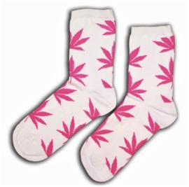 Cannabis sokken wit met roze wiet bladeren maat 36 - 42