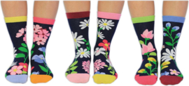 Oddsocks - Cadeaudoos Blooming Amazing met 6 verschillende gebloemde sokken - maat 37-42