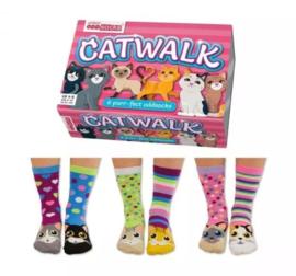 Oddsocks - Cadeaudoos met 6 verschillende Catwalk sokken - maat 37-42