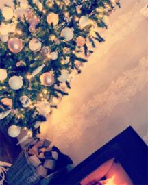 Kerst sieraden winter 2018