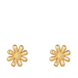 Oorbellen Chirurgisch Staal bloemetjes oorknopjes goud