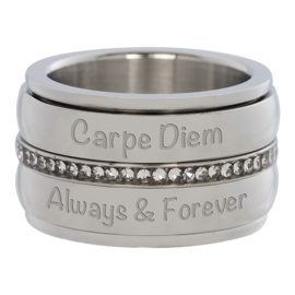 Wish, Dream, Believe stalen Ring 4 mm