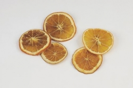 Orange slices - BEK014