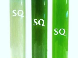 Cosmetic colorant - pigment solution - green - KCP05