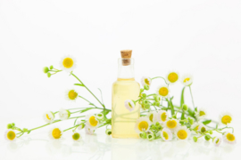 Fragrance oil for cosmetics / soaps / melts - Camomile - GOF341