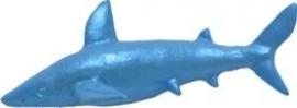 - AANBIEDING -  First Impressions - Mal  - Zeedieren - haai klein - SC148