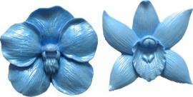 - AANBIEDING - First Impressions - Mal - Bloemen Set - orchidee 2 - FL303