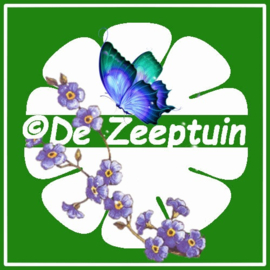 -                                                                   De Zeeptuin - Entrepreneur of the month