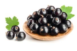 - NEW - Fragrance oil for cosmetics / melt & pour soap - Blackcurrant - GOG020