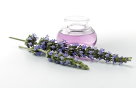 Fragrance oil for cosmetics / melt & pour soap - Lavender - GOG111