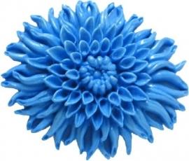 - AANBIEDING - First Impressions - Bloemen - chrysant - FL270