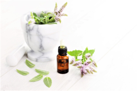 Essential oil Mint (Peppermint) - EO017